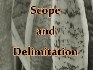 scope delimitation thesis writing Sample of a scope and limitation thesis writing: scope and limitation of there are services which can turn out to be helpful in scope and delimitation of the.